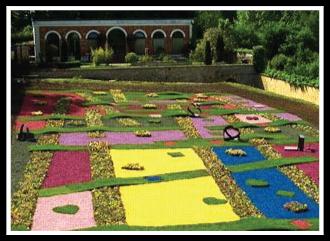 ORGACOLOR decorative coloured mulch, yellow mulch, pink mulch, blue mulch, purple mulch, green mulch
