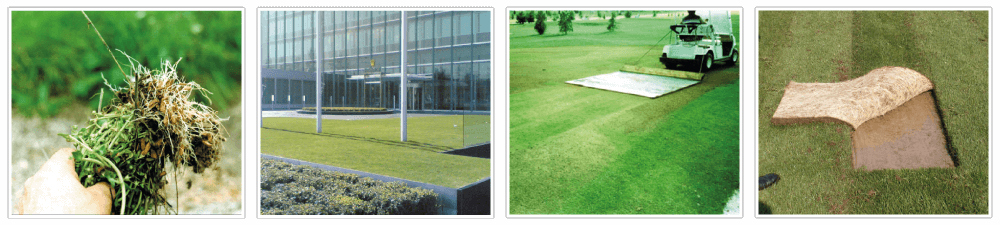 ORGANISOL - Top dressing - Lawn renovation for sports grounds, golf courses.
