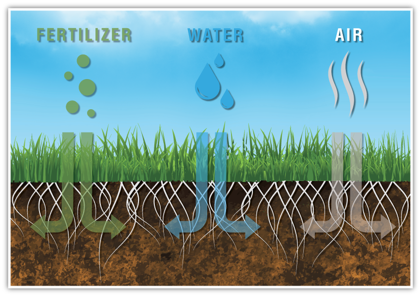 ORGANISOL top dressing facilitates circulation of air, water and fertilizer.