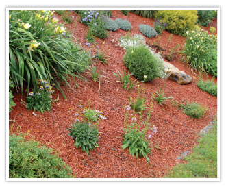 COPEO Copper long lasting decorative coloured mulch
