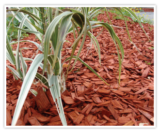 COPEO Copper durable coloured mulch