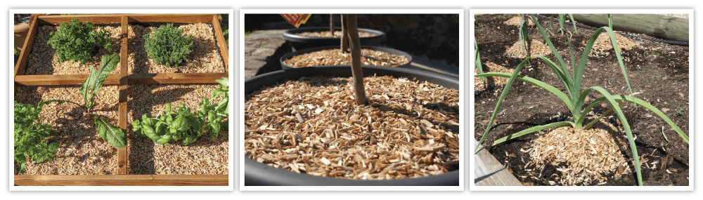 MULCHEO NATURAL long lasting small size mulch for vegetables and plants