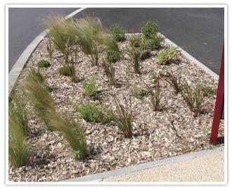 Copeo Naturel : Copeaux de châtaignier pour la réalisation de paillage écologique et décoratif