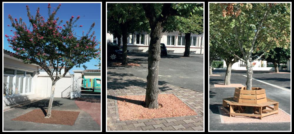 permeo-entourage-arbre-surface-drainante